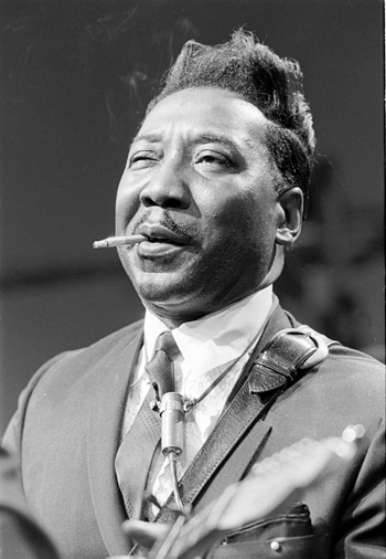Muddy Waters Put Me In Your Lay Away Still A Fool